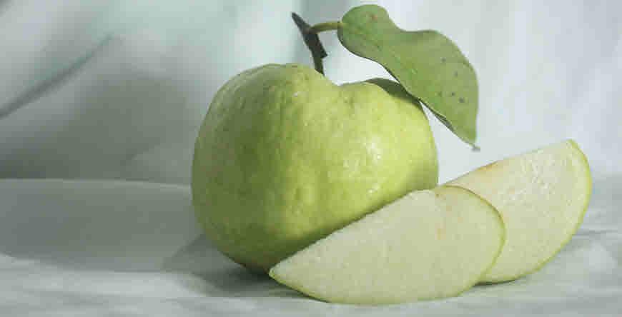 guava medicinal uses