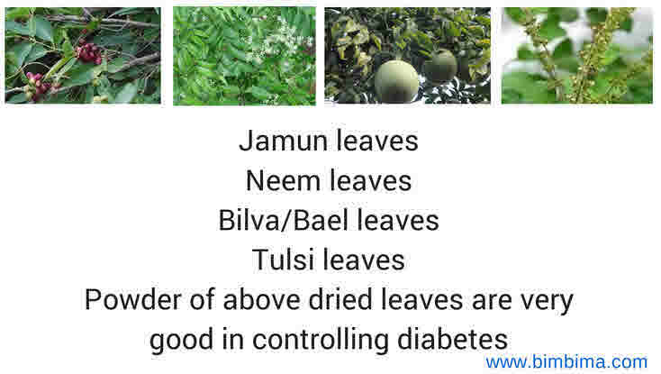 diabetes herbal powder