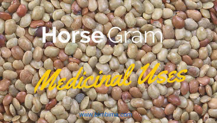 Horse-gram medicinal uses