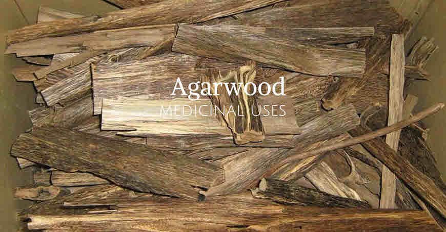 agarwood in ayurveda