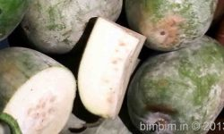 white gourd medicinal uses