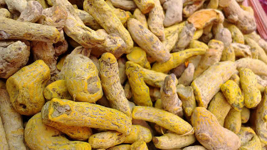 Turmeric Health Benefits, Uses, Dosage and Side-effects - bimbima