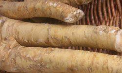 horseradish health benefits