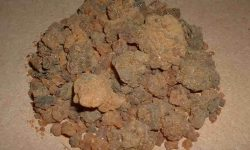Myrrh Resin Benefits and Medicinal Uses